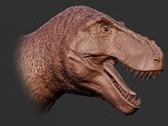 Feather Tyrannosaurus Rex Head 3D Model The Isle