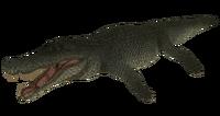 Default Deinosuchus The Isle