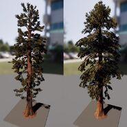 New Redwood Trees Models The Isle