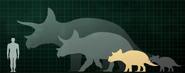 SizeChartTriceratops