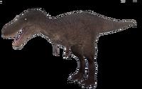 Default Tyrannosaurus Rex Juvenile The Isle