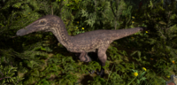Brown Austroraptor The Isle