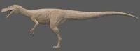 Albino Herrerasaurus The Isle