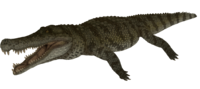 Barred Deinosuchus The Isle