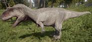 Albino Giganotosaurus The Isle
