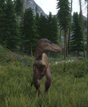 Juvenile T.Rex