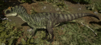 Tropical Allosaurus The Isle