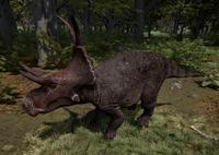 Melanistic Diabloceratops The Isle