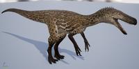 Ocelot Herrerasaurus The Isle