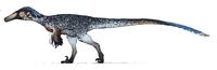 White Austroraptor The Isle