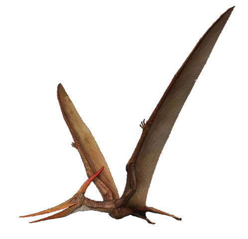 File:Pteranodon The Isle.png