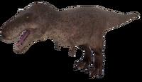 Default Tyrannosaurus Rex Adult The Isle