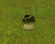 Stonespore Fungus