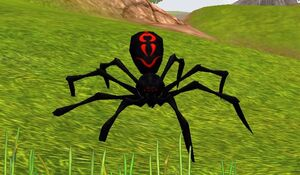 Black Widow Pet