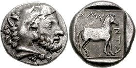 Amyntas III-161113