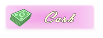 Cashsq