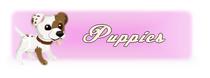 Puppiessq