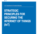 Strategic Principles for Security the Internet of Things (IoT)