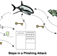 Phishing | The IT Law Wiki | FANDOM powered by Wikia