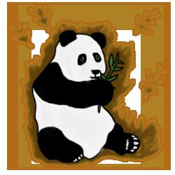 Panda evo