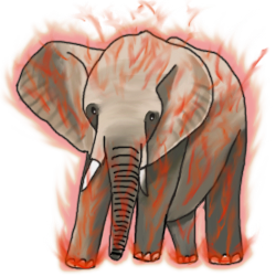 Elephant evo