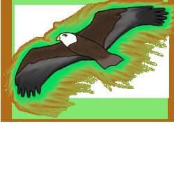 Eagle evo
