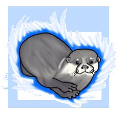 Otter evo