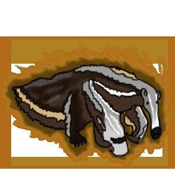 Anteater evo