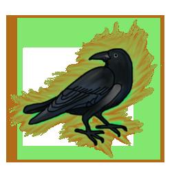 Raven evo