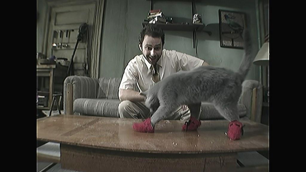 Paddyu0027s Pub: Home Of The Original Kitten Mittens
