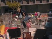 1x2 Dennis climbs fence