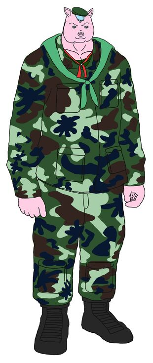 Pig militiary .soldier with a normal look looking at the passion of the pig itself chanon saiwiali happy life level
