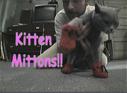 Kitten-mittons2