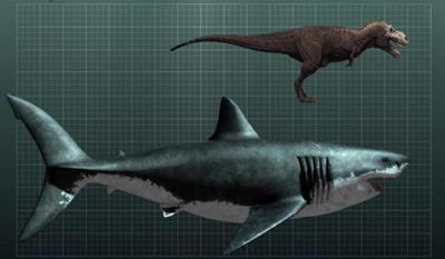 400px-Megalodon-shark