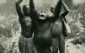 B ape