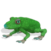 180px-Frog