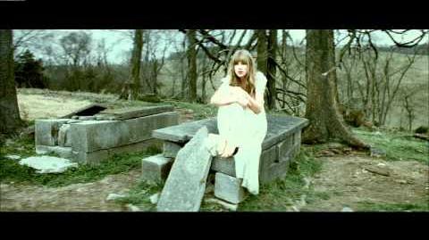 Taylor Swift ft
