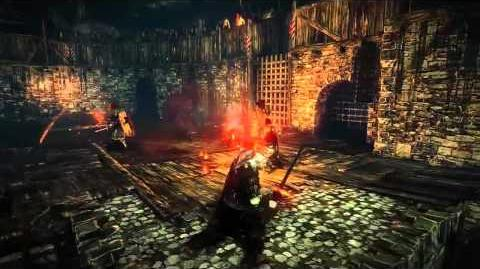 The Witcher 2 Arena