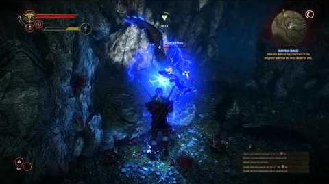 The Witcher 2 Assassin of KIngs Harpy Queen Battle (Insane)
