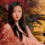 Wonyoung Icon