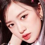 Yujin Icon