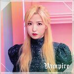 Hitomi Vampire Album Cover