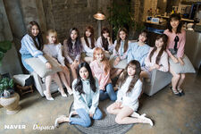 Naver x Dispatch IZONE 1