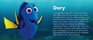 Dory information