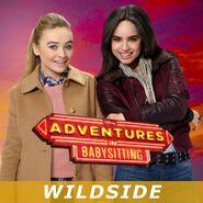 Wildside from Adventures in Babysitting