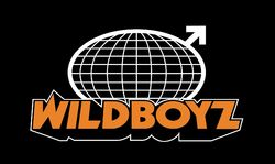 Wildboyz logo large
