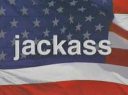 Jackass title card
