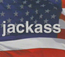 Jackass (TV series)