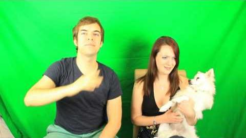 BEHIND THE SCENES OF JACKASK (tons of hot girls)-0