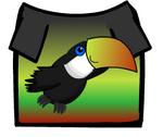 Toucanshirt